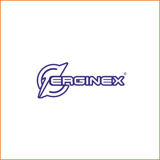 ERGINEX